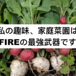 FIRE家庭菜園