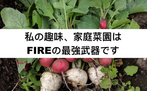 FIRE家庭菜園
